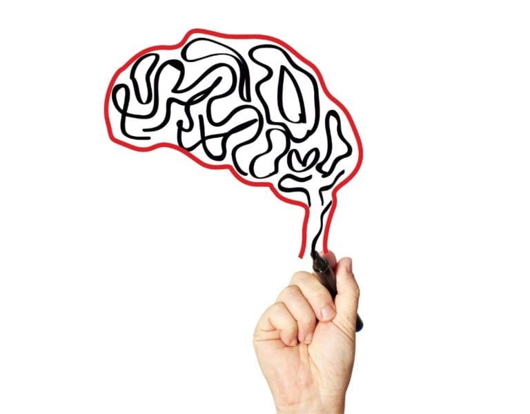 het zenuwstelsel wordt beschermd door de bloed-hersenbarrière. deze ligt als een deken over de hersenen.